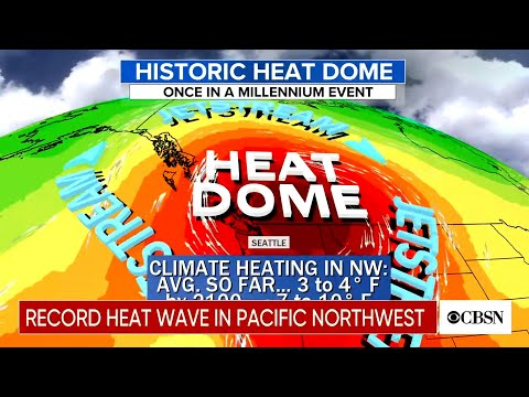 Analysts dissect historic Pacific Northwest 'heat dome'