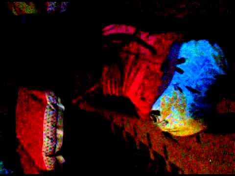 futura dançarina de funk thumbnail