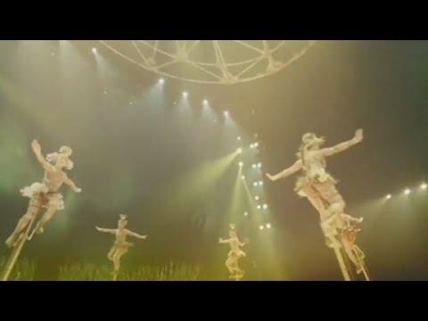 Cirque du Soleil sold to investor group