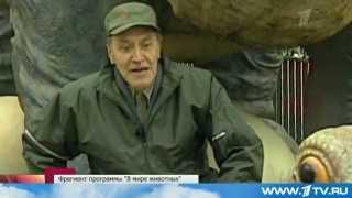 Юбилей Николая Дроздова (В мире животных) ! 75 лет!