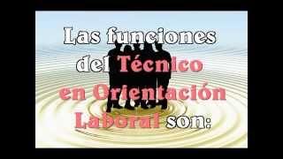 Video Curso Tecnico en Orientacion Laboral