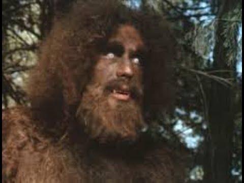 مقطع من المسلسل الشهير ستيف اوستن motarjam