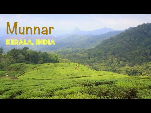 MUNNAR : Most beautiful hill station in Kerala | God's Own Country