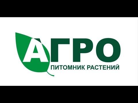Презентация питомника растений АГРО
