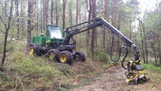 Praca w lesie na Podlasiu. Harvester & Forwarder .