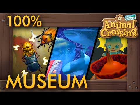 Animal Crossing: New Horizons - Museum 100% Completed Showcase