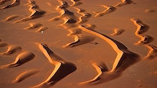 DESERT FLIGHT (HD)(Coast to Coast)