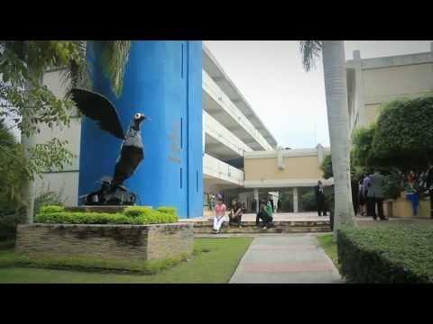 Video Institucional UAPA