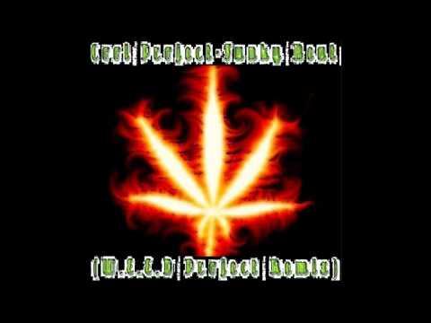 Cool Project Funky BeatW E E D Project Remix