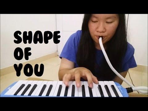 Shape Of You - Ed Sheeran | Cindy Felicia | Melodica Cover