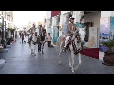 Travel Video - Arabian Horses running in Doha streets, Qatar - Horse Videos | Henriette Bokslag