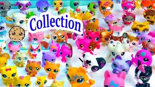 Mega Littlest Pet Shop Collection Tour All Cats Dogs Fairy More Animals LPS Toys Videos Cookieswirlc