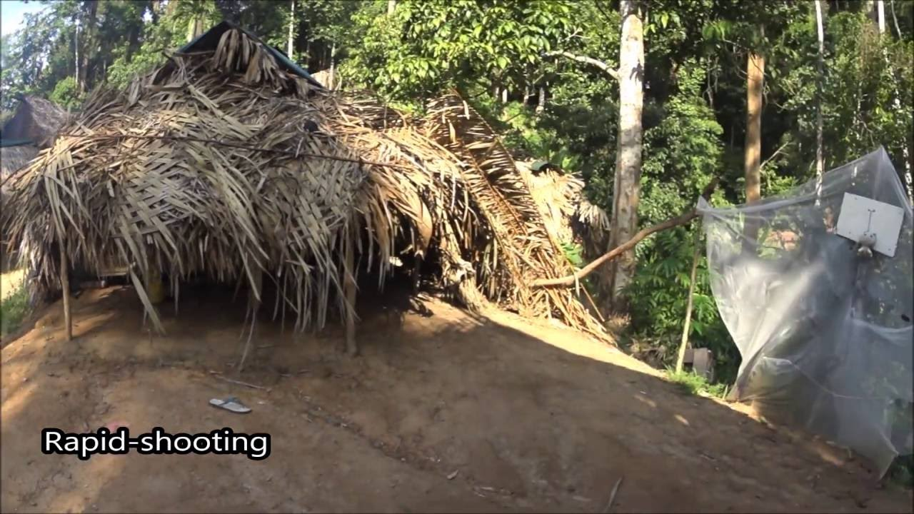 Batek People: Batek Tribe Village Along Tembeling River, Oct 2016