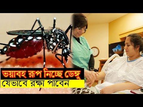 ভয়াবহ রূপ নিচ্ছে ডেঙ্গু জ্বর, কিভাবে বুঝবেন ডেঙ্গু হয়েছে? Change Bangla