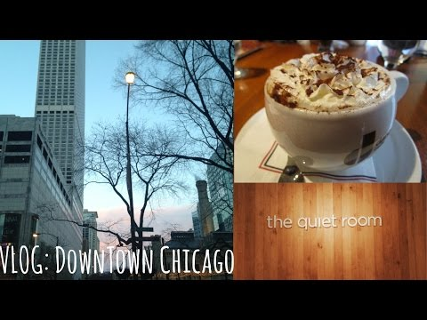 GREEK CAFE & GOING TO THE CHICAGO WATER TOWER | HelloStayVlogging