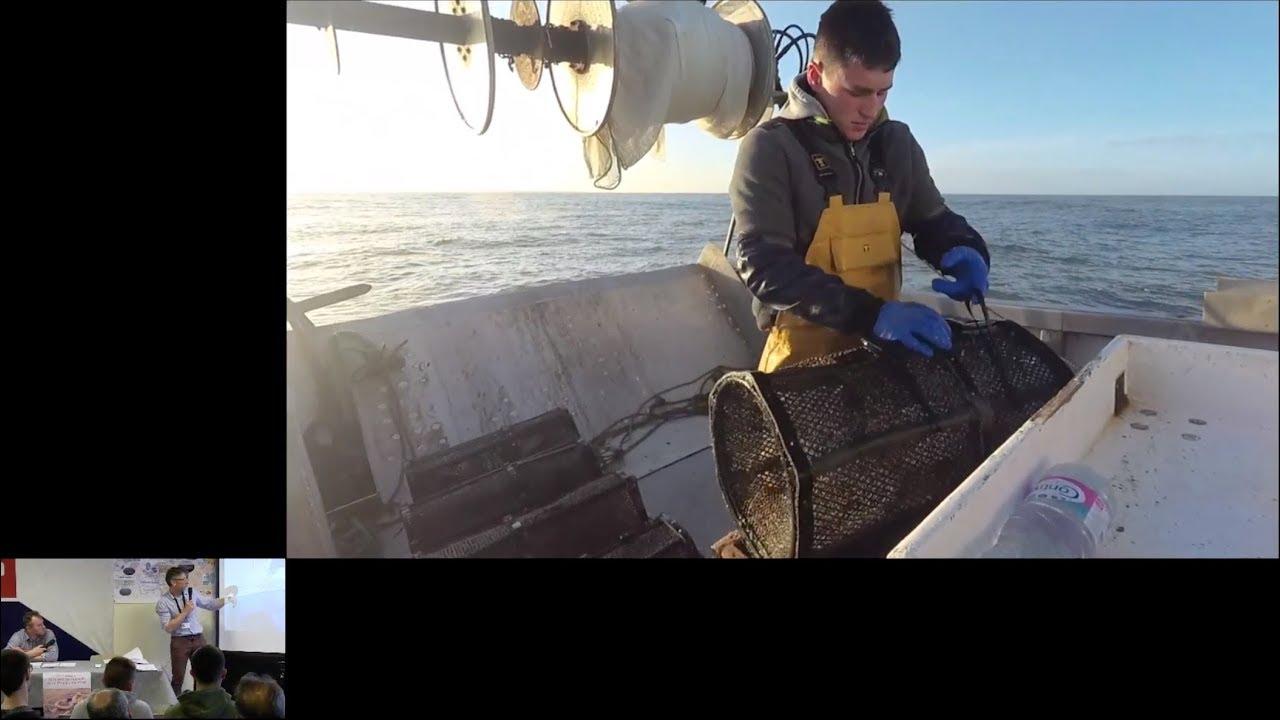 Les risques professionnels à bord des navires pratiquant les métiers du casier et de la nasse