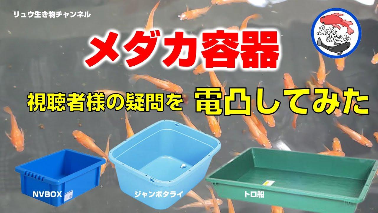 【メダカ容器】視聴者様の疑問を容器会社に電凸してみた結果!?