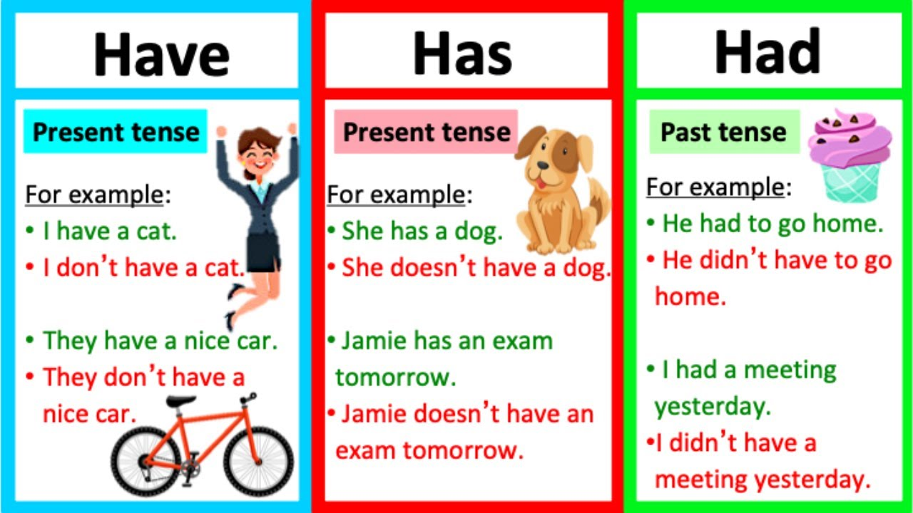 Download HAVE, HAS & HAD 🤔 | Grammar lesson | How to use them correctly & quiz!