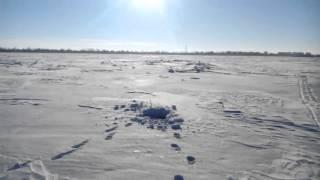 На зимнюю рыбалку на Динго Т 150