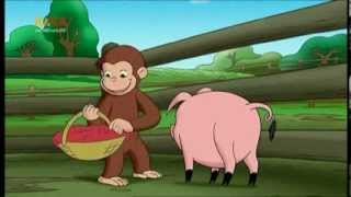 Coco, der neugierige Affe - S02E19 - Kein Kinderspiel