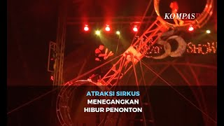 Atraksi Sirkus Menegangkan Hibur Penonton