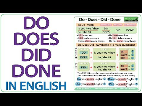 Do Does Did Done - English Grammar Lesson - YouTube