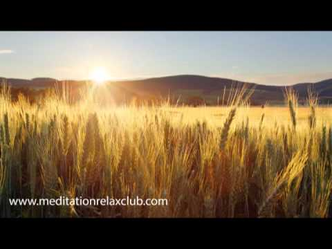 Relaxing Music | Yoga Background | Meditation - Spa - Massage - Reiki - Study
