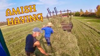 Making Hay With The Amish