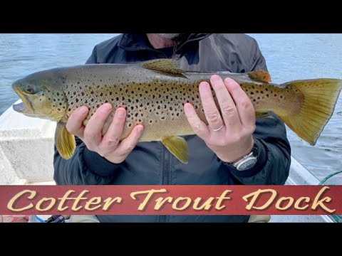 Arkansas White River Trout Fishing Report May 13, 2020