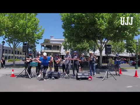 Ain't Nobody Here but Us Chickens - Bendigo Blues and Roots Music Festival 2017
