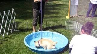 Cascade Cairn Fun Day: Jefferson Weiner Bobs!