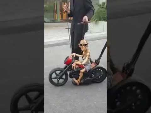 Motorcycle puppet. This guy took a wave, lol
