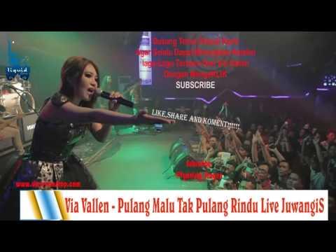 Via Vallen   Pulang Malu Tak Pulang Rindu Live Juwangi 2016 By Vianisty Via vallen