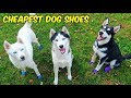 Cheapest Dog Shoes on Amazon