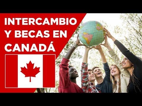 Intercambio Y Becas En Canadá - Conoce Canadá
