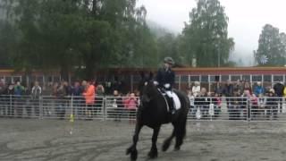 Linnea og Balder. Dyrskun 2013