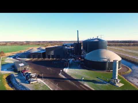 Nature Energy er markedsleder på dansk biogas til naturgasnettet