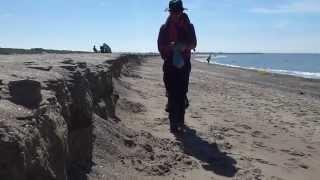 Prélèvement du sable N°1060 / Merville-Franceville plage