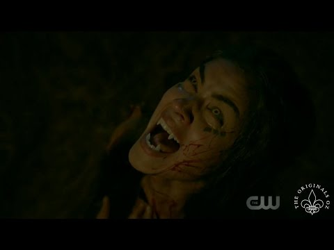 The Originals 4x08 The Hollow created the werewolf curse
