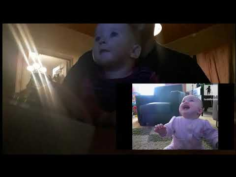 Baby Laugh To Baby Laughing At The Dog Eating Popcorn