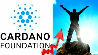 (Must See) Cardano Is A Sleeping Giant! ADA Shelly UPDATE