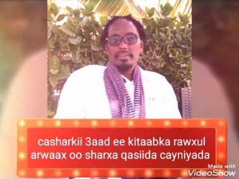 Casharkii3aad Ee Kitaabka Raw Xul Arwaax Fii Sharxil Cayniyah Fadiilatu Sh Siciid Axamed Faarax