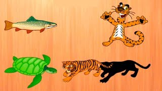ZOO Wild Animals Toys - Wooden Toy Zoo Animals for Children Educational Video by DiAndTiShow Kids