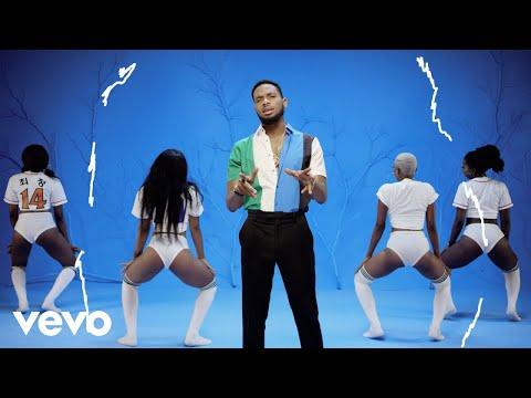 D'banj - Shoulda [Official Video]