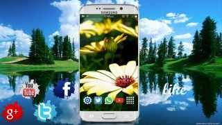 Como Enviar Peliculas o Videos De 1 GB por Whatsapp