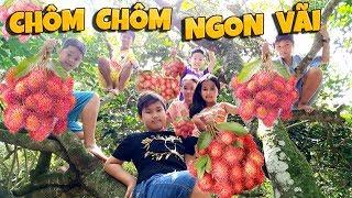 Tony | Dẫn Team Đột Nhập Vào Thế Giới Trái Cây - Rambutan Garden