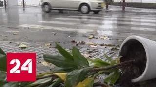Смотреть видео После бури солнце: на Дальнем Востоке бушует тайфун - Россия 24 онлайн