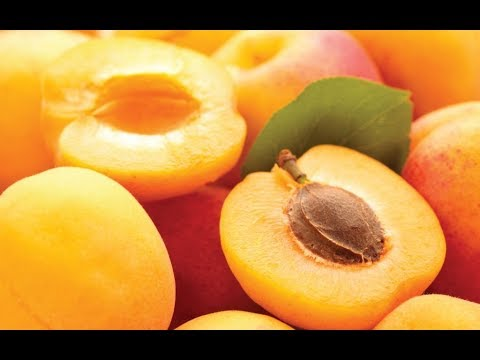 7 Healthy Reasons to Eat Apricots Everyday
