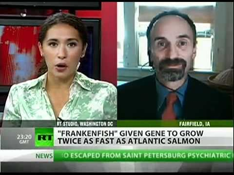 FRANKENSTEIN FISH FOOD !! GMO EVIL TECHNOLOGY AGAINST GOD !! DON'T EAT IT !!