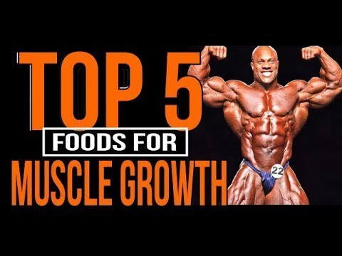 [HINDI]TOP 5 MUSCLE BUILDING FOOD | HOW TO BUILD MUSCLES
